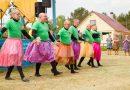 Весело и с пользой: нюксяне на фестивале юмора
